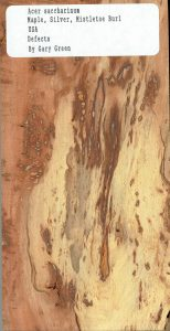 Acer Saccharinum Maple Silver Mistletoe Burl Defects