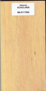 Alstonia Scholaris Milky Pine