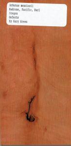 Arbutus Menziesii Madrone Pacific Burl Oregon