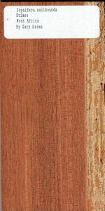 Copaifera Salikounda Etimoe West Africa