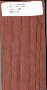 Dalbergia Tucurensis Rosewood Nicaraguan Central America