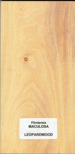 Flindersia Maculosa Leopardwood