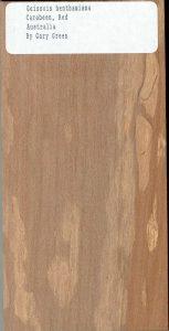 Geissois Benthamiana Carabeen Red Australia